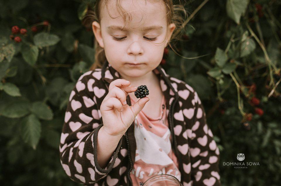 W babcinym ogrodzie – Krótka historia