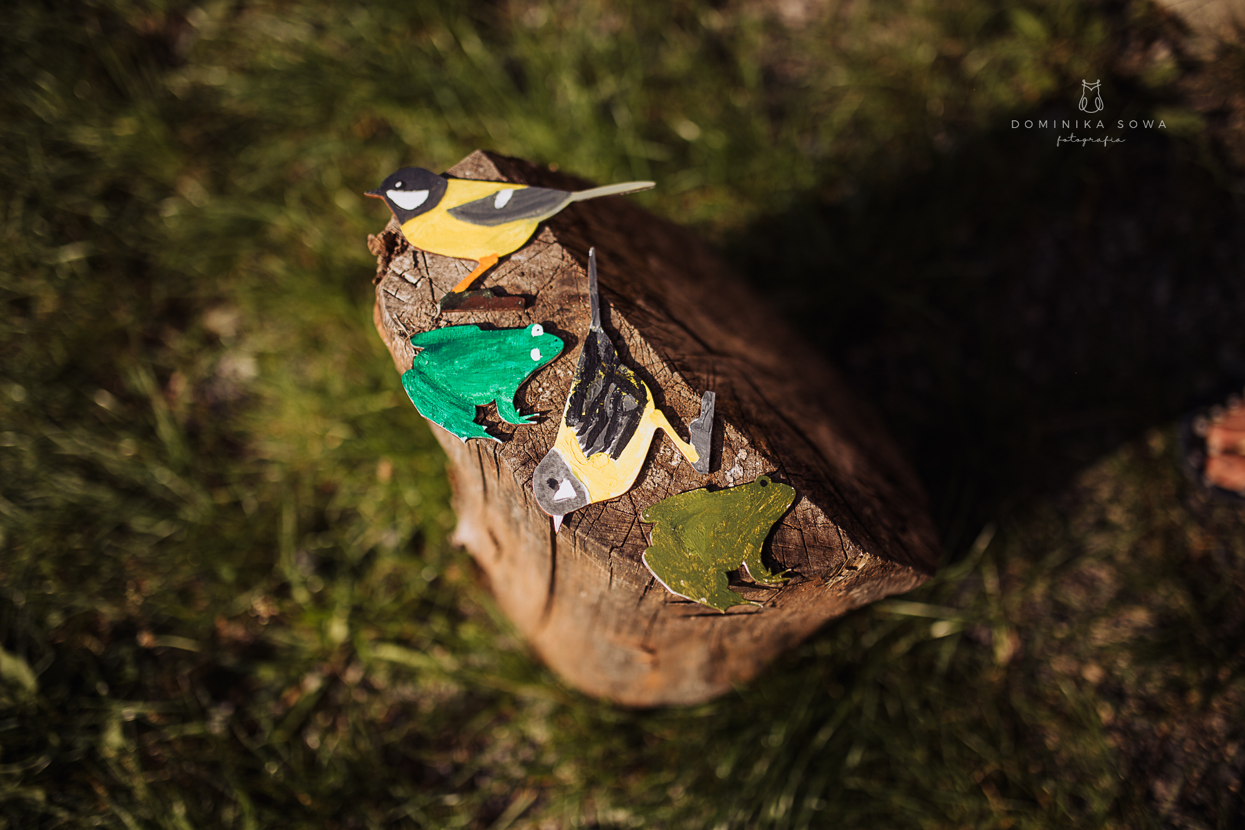 Zielony Puszczyk - trzecie urodziny