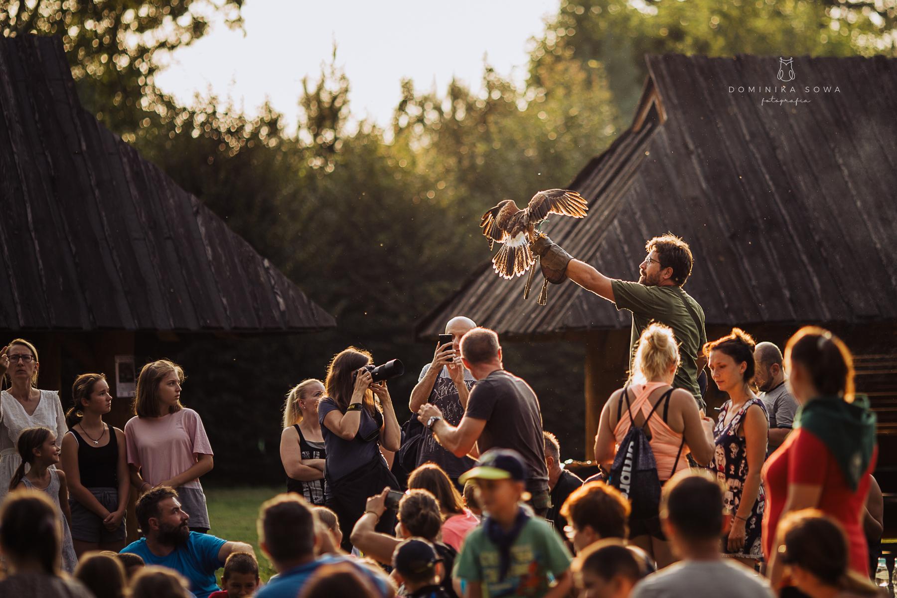 Pożegnanie bociana - sierpień 2019